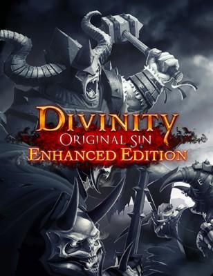Découvrez Divinity Original Sin Enhanced Edition