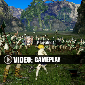 Fire Emblem Musou Nintendo 3DS Gameplay Video