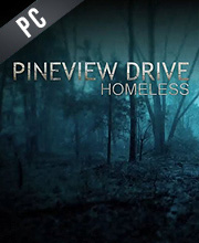Pineview Drive Homeless