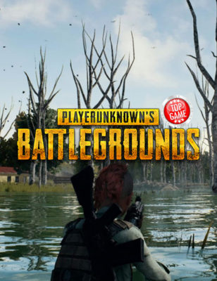 Des exemplaires physiques de PlayerUnknown's Battlegrounds pour la Xbox One, pas de suite.