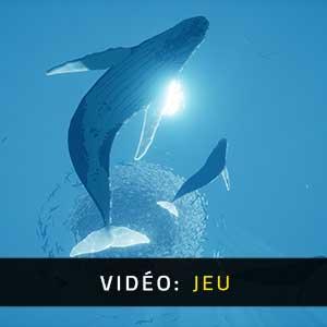 ABZU Vidéo De Gameplay