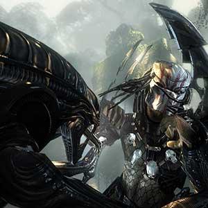 Aliens VS Predator Duel