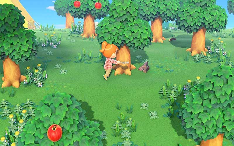 Animal Crossing New Horizons Nintendo Switch Forêt