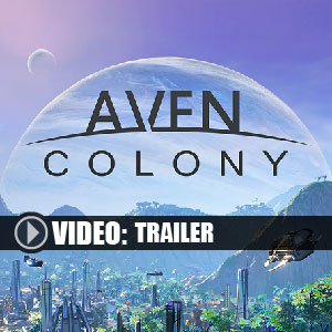 Acheter Aven Colony Clé Cd Comparateur Prix