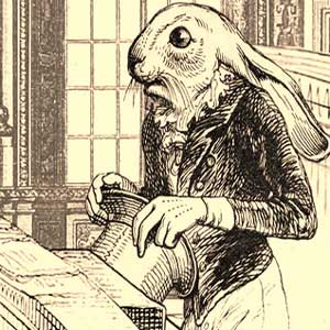Aviary Attorney Barron the rabbit