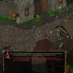 Baldur's Gate Enhanced Edition Château