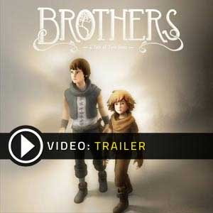Acheter Brothers A Tale of Two Sons clé CD Comparateur Prix