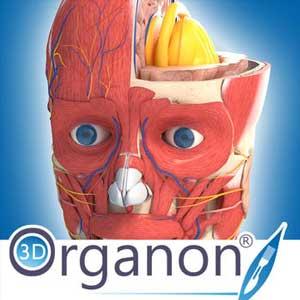 Acheter 3D Organon Anatomy Clé CD Comparateur Prix