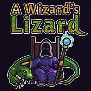 A Wizards Lizard