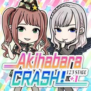 Akihabara CRASH 123STAGE Plus 1 Add 10 Ball Forever