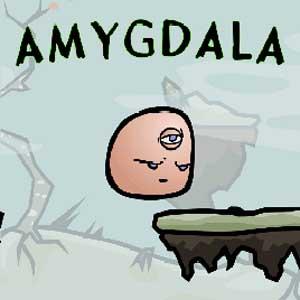 Acheter Amygdala Clé Cd Comparateur Prix