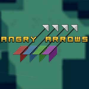 Acheter Angry Arrows Clé Cd Comparateur Prix