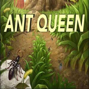 Acheter Ant Queen Clé Cd Comparateur Prix