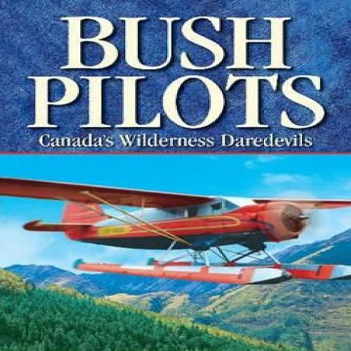 Acheter Aviator Bush Pilot Clé Cd Comparateur Prix