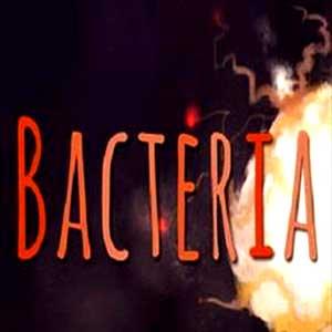 Acheter Bacteria Clé Cd Comparateur Prix
