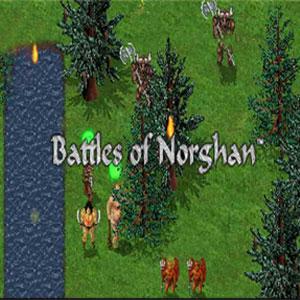 Acheter Battles of Norghan Clé CD Comparateur Prix