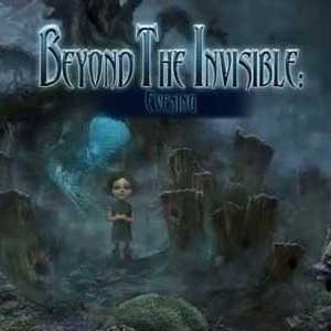 Beyond The Invisible Evening