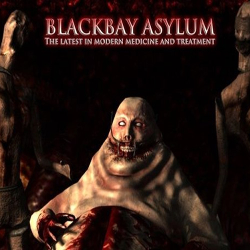 Acheter Blackbay Asylum Clé Cd Comparateur Prix
