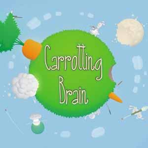 Acheter Carrotting Brain Clé Cd Comparateur Prix