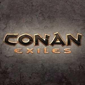 Acheter Conan Exiles Clé Cd Comparateur Prix