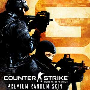 Acheter CSGO 1 Premium Random Skin Clé Cd Comparateur Prix