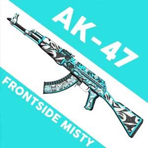 Acheter CSGO AK47 Skin Frontside Misty Clé Cd Comparateur Prix
