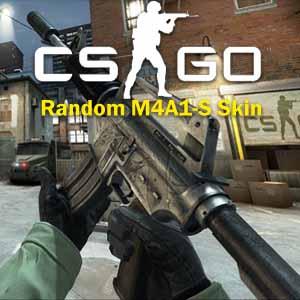 CSGO Random M4A1-S Skin