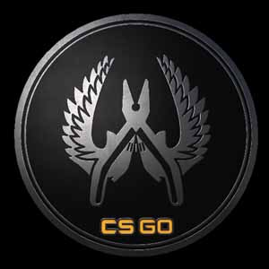 Acheter CSGO Series 1 Guardian Collectible Pin Clé Cd Comparateur Prix