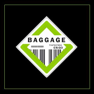 Acheter CSGO Series 2 Baggage Collectible Pin Clé Cd Comparateur Prix