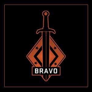 CSGO Series 2 Bravo Collectible Pin