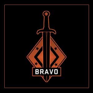 Acheter CSGO Series 2 Bravo Collectible Pin Clé Cd Comparateur Prix
