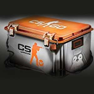 CSWarzone CSGO Skin Case