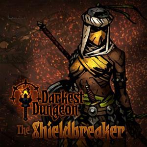 Acheter Darkest Dungeon The Shieldbreaker Nintendo Switch comparateur prix