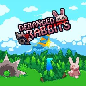 Acheter Deranged Rabbits Clé Cd Comparateur Prix