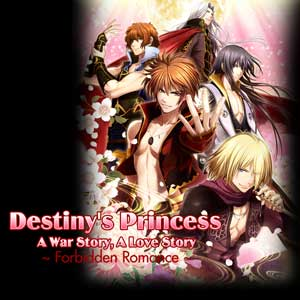 Destinys Princess A War Story A Love Story