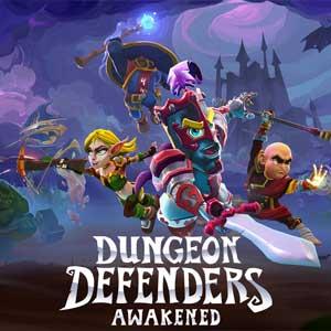 Acheter Dungeon Defenders Awakened Clé CD Comparateur Prix