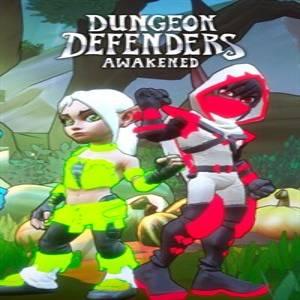 Dungeon Defenders Awakened Chromatic Costumes