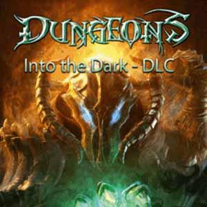 Acheter Dungeons Into the Dark Clé Cd Comparateur Prix