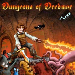 Acheter Dungeons of Dredmor Clé Cd Comparateur Prix