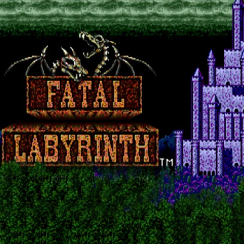 Acheter Fatal Labyrinth Clé Cd Comparateur Prix