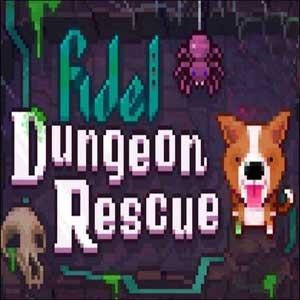 Acheter Fidel Dungeon Rescue Clé CD Comparateur Prix