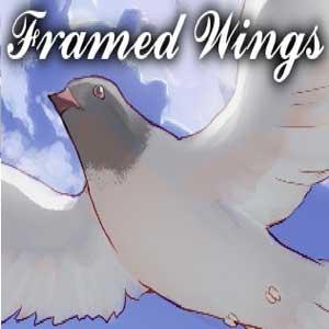 Acheter Framed Wings Clé Cd Comparateur Prix
