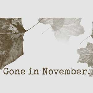 Acheter Gone In November Clé CD Comparateur Prix