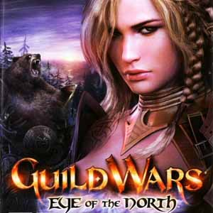 Acheter Guild Wars Eye Of The North Clé Cd Comparateur Prix