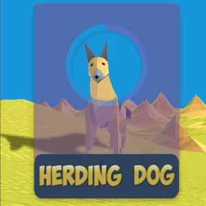 Acheter Herding Dog Clé Cd Comparateur Prix