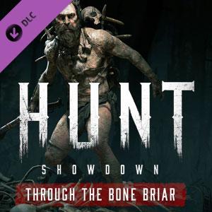 Acheter Hunt Showdown Through the Bone Briar PS4 Comparateur Prix