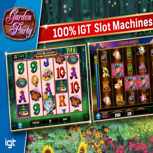 Acheter IGT Slots Garden Party Cle Cd Comparateur Prix