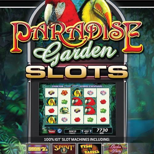 Acheter IGT Slots Paradise Garden Cle Cd Comparateur Prix