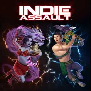 Acheter Indie Assault Clé Cd Comparateur Prix