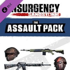 Insurgency Sandstorm Assault Pack